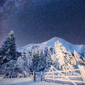 Magical winter landscape and the star sky — Stock Photo