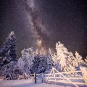 Magical winter landscape — Stock Photo