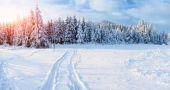 Estrada de inverno — Fotografia Stock