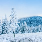 Frost in winter mountains — Stock Photo