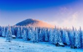 Winter landscape trees in frost  — Stock Photo