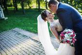 Portrait of wedding couple — Stock Photo