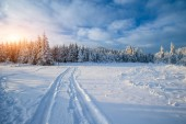 冬天路 — 图库照片