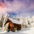 Beautiful wooden house in a winter sunny day — Stock Photo #60859317