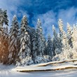 Beautiful wooden house in a winter sunny day — Stock Photo #60859841