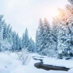 ruisseau de montagne en hiver — Photo #61924729