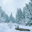 Mountain stream in winter  — Stockfoto #61975535