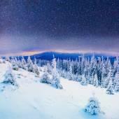 Dairy Star Trek in the winter woods — Stock Photo