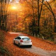 Car on a forest path — Stock Photo #63744991