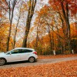 Car on a forest path — Stock Photo #68089717
