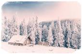 Chalet in the mountains. Vintage effect — Stock Photo