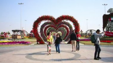 Blooming hearts  at Dubai miracle garden — Stock Video