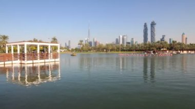 Lake in park in Dubai city — Stock Video
