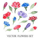 Vector set of watercolor flowers — Stock Vector