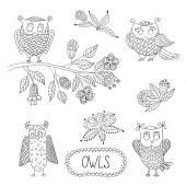 Cute cartoon vector owls, flowers, brunche. — Stock Vector