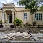 Hemingsways house in san Francisca, cuba — Stock Photo #53914041