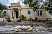 Hemingsways house in san Francisca, cuba — Stock Photo