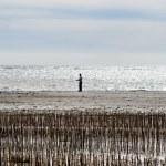 Blaavand beach at the Danish North Sea coast — Stockfoto #54297949