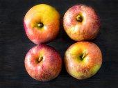 Four red apples, Belle de Boskoop — Stock Photo