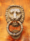 Door knocker in shape of lion's head. Italy. Florence. — Stock Photo