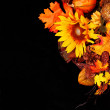 Autumn or Thanksgiving Bouquet over black background. Sunflower — Stock Photo #54084523