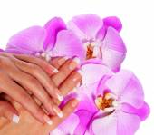 French Manicure. Beautiful Female Hands with pink orchid flowers — Stock Photo
