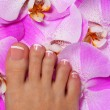 Pedicure with pink orchid flower. Beautiful female foot — Stock Photo #55552689