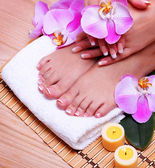 Nail care. French Manicure on Female Feet and Hands — Stock Photo