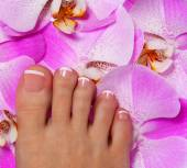 Pedicure with pink orchid flower. Beautiful female foot — Stock Photo