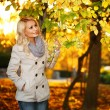 Autumn Woman. Fall. Blonde Beautiful Girl with Yellow Leaves — Stock Photo #55711855