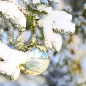 Gold Christmas Ball on Christmas tree branch covered with Snow.  — Stock Photo