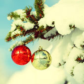 Christmas Balls on Christmas tree branch covered with Snow — Stock Photo