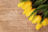 Yellow tulips on burlap background with cope space — Stock Photo
