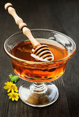 Honey in a glass dish — Stock Photo