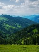 The mountain slopes are covered in forests — Stock Photo