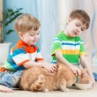 Children boys feeding red cat — Stock Photo #61968311