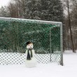 Snowman goalie — Stock Photo #53647313