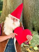 Valentine gnome — Stock Photo