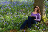 Springtime bluebells and a book — Stock Photo