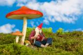 Garden gnome playing music — Stock Photo