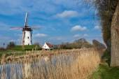 Damme and windmill in Flanders — Stock Photo