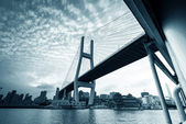 Shanghai Nanpu Bridge — Stock Photo