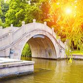 Arched Bridge — Stock Photo