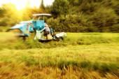 Work rice harvester — Stock Photo