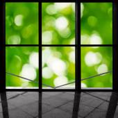 Green window — Stock Photo