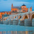 Roman Bridge and Mosque of Cordoba at night (Spain) — Stock Photo #59298329