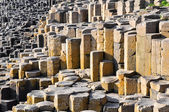 Giant's Causeway, Northern Ireland — Stockfoto