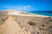 GR 131, long-distance footpath in Fuerteventura (Spain) — Stock Photo