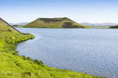 Pseudo craters at Skutustadir surrounding lake Myvatn, Iceland — Stock Photo