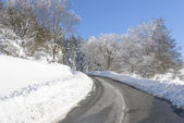 Road through snowy forest, Basque Country (Spain) — Stock Photo